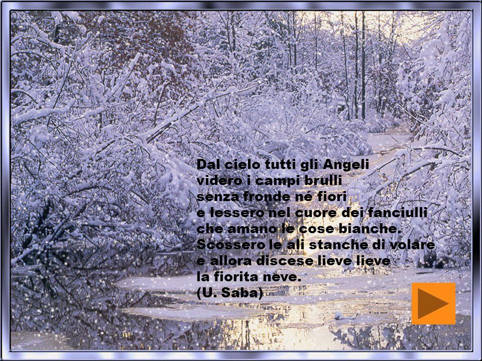 Dal cielo tutti gli Angeli videro i campi brulli senza fronde né fiori e lessero nel cuore dei fanciulli che amano le cose bianche.
