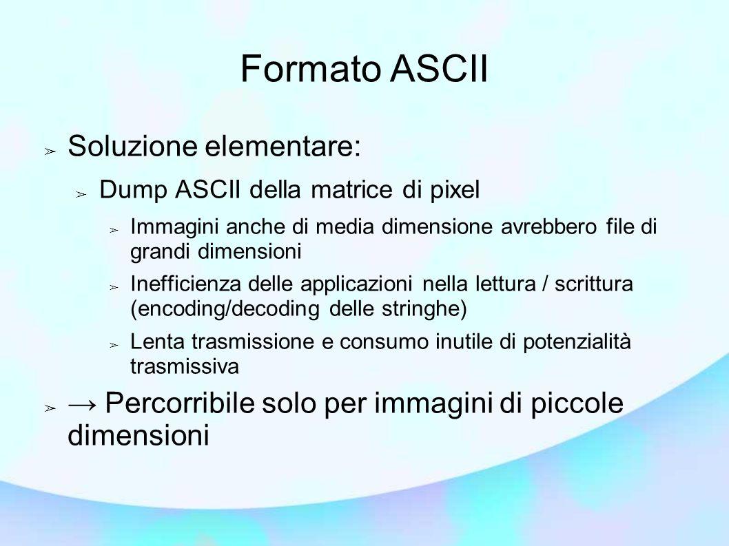 Formato ASCII Soluzione elementare: