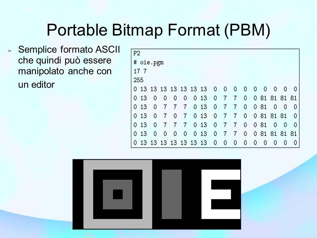 Portable Bitmap Format (PBM)