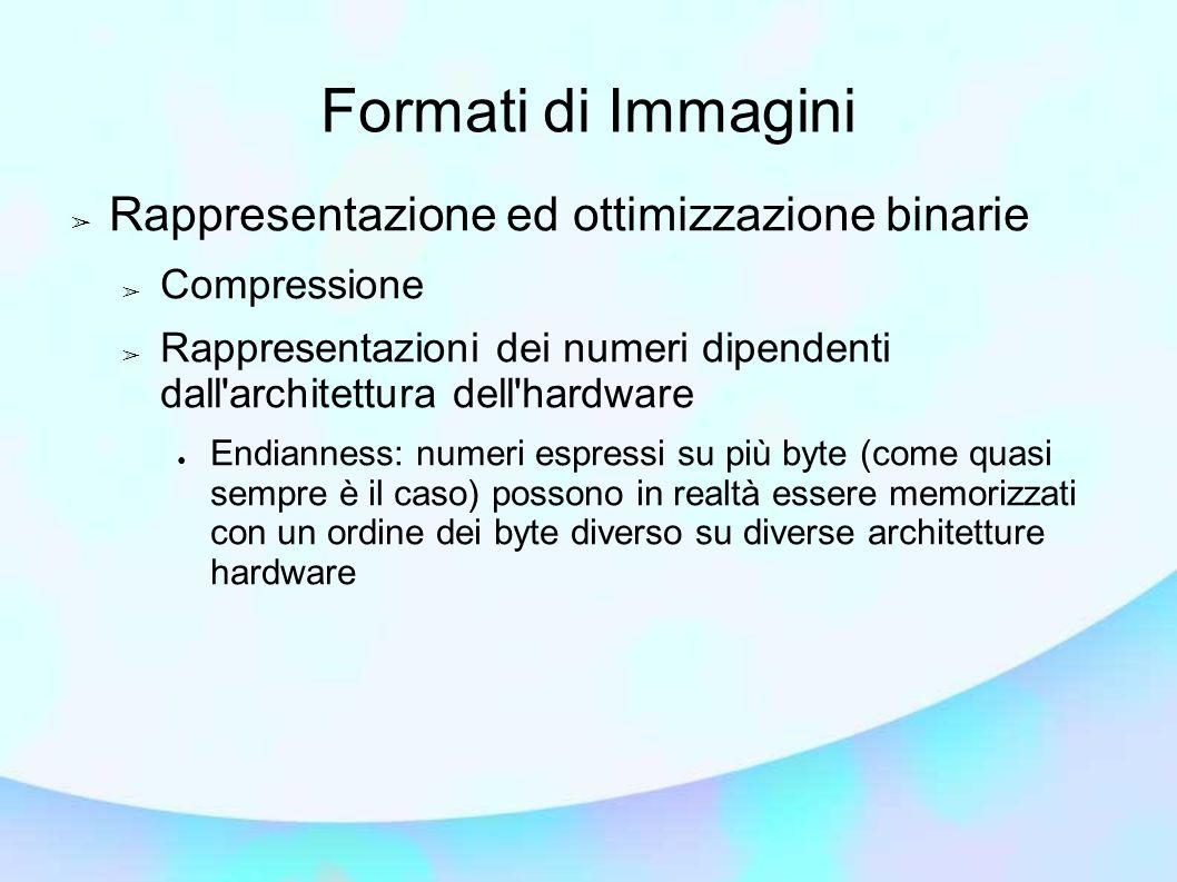 Formati di Immagini Rappresentazione ed ottimizzazione binarie