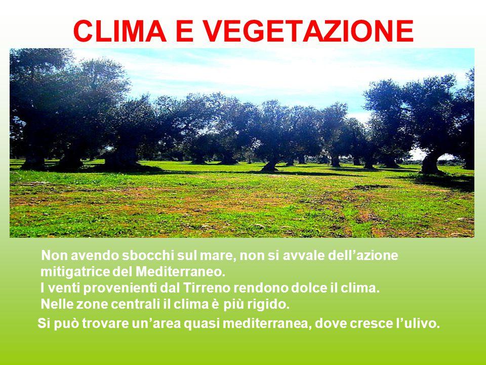 CLIMA E VEGETAZIONE
