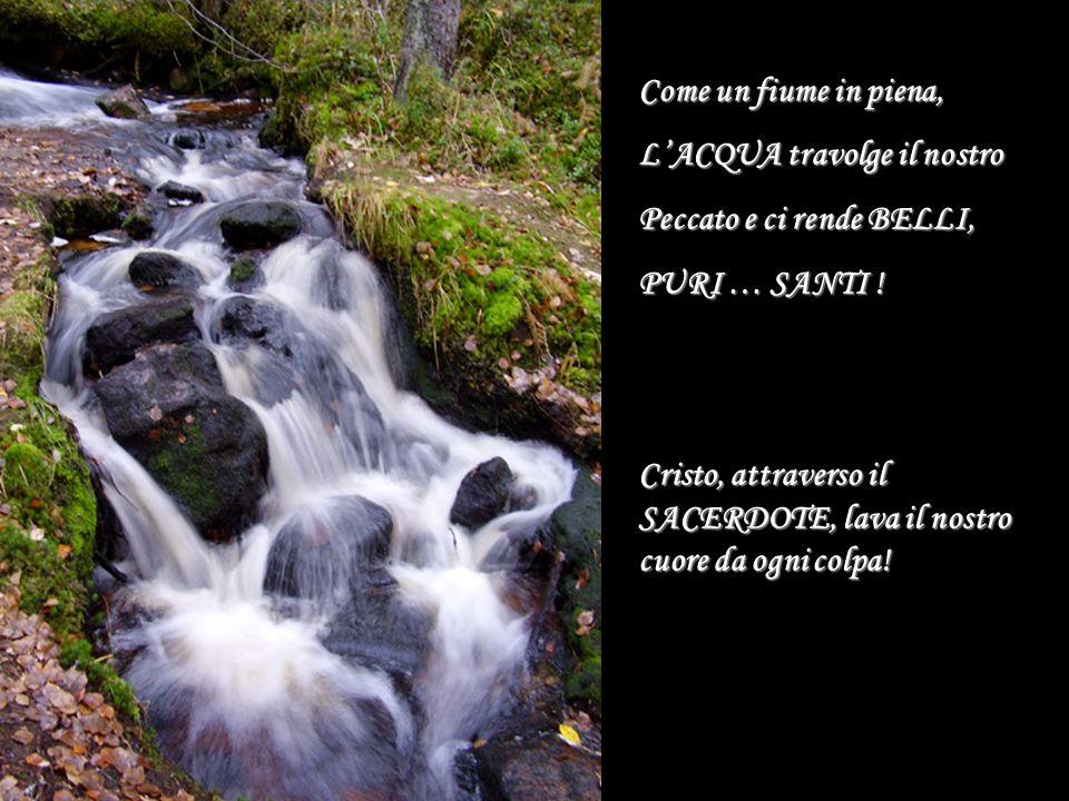 Come un fiume in piena, L'ACQUA travolge il nostro. Peccato e ci rende BELLI, PURI … SANTI !