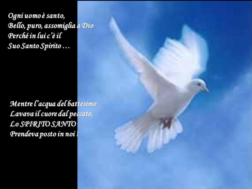 Ogni uomo è santo, Bello, puro, assomiglia a Dio. Perché in lui c'è il. Suo Santo Spirito … Mentre l'acqua del battesimo.