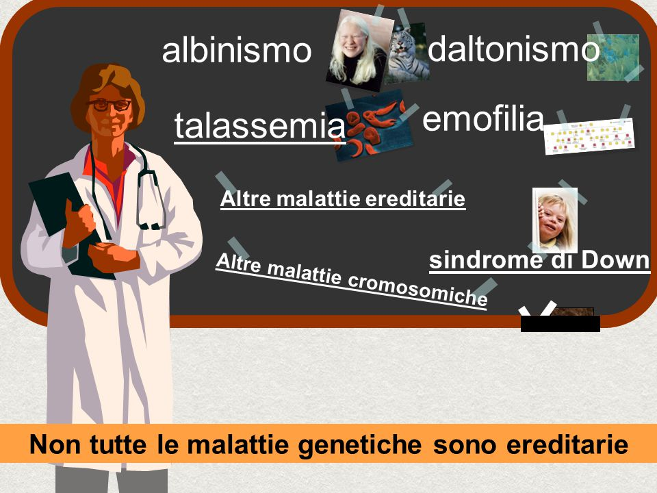 albinismo daltonismo emofilia talassemia