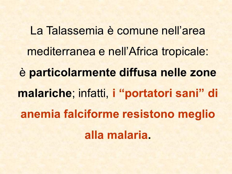 La Talassemia è comune nell'area mediterranea e nell'Africa tropicale: