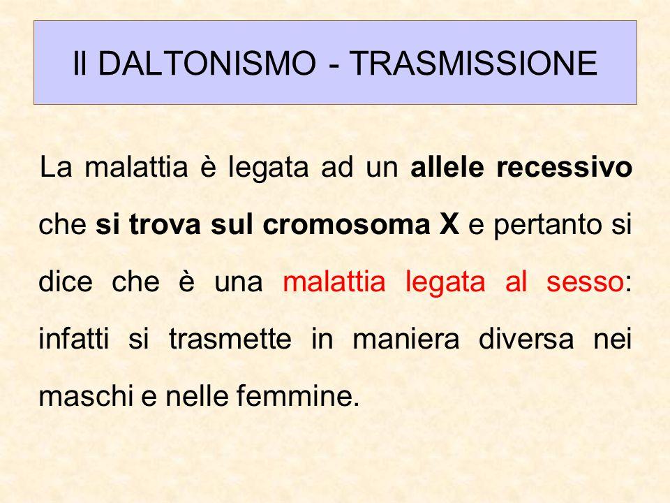 Il DALTONISMO - TRASMISSIONE