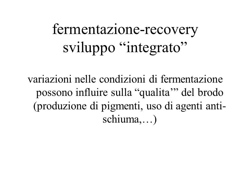 fermentazione-recovery sviluppo integrato