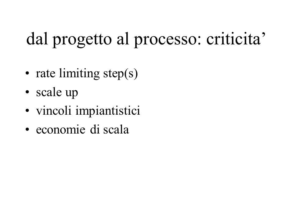 dal progetto al processo: criticita'