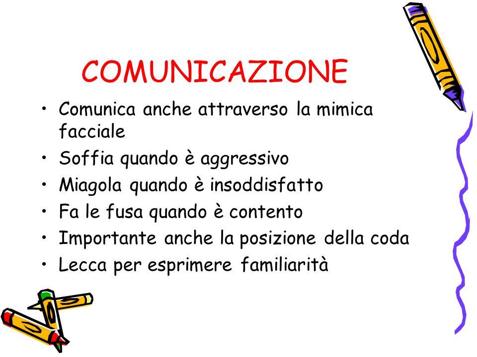 COMUNICAZIONE Comunica anche attraverso la mimica facciale