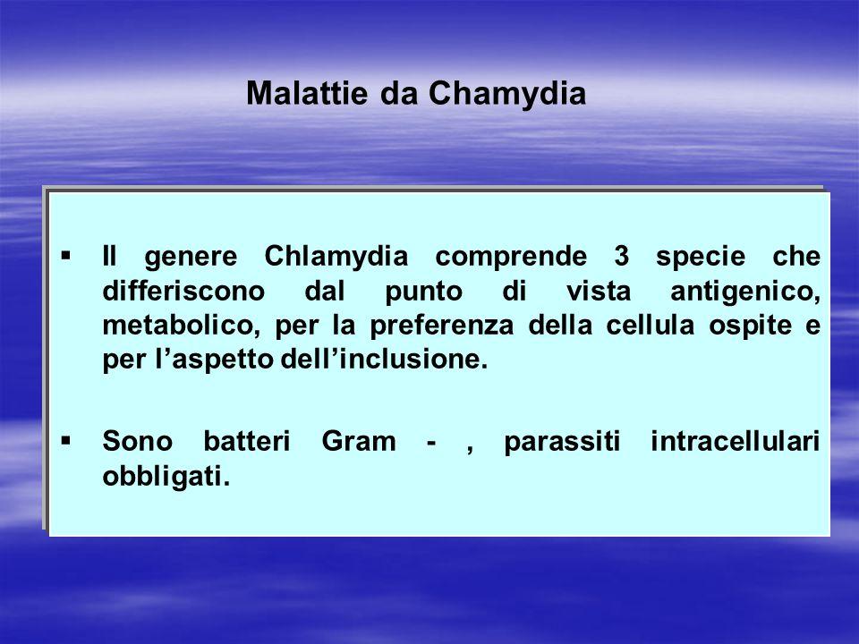 Malattie da Chamydia