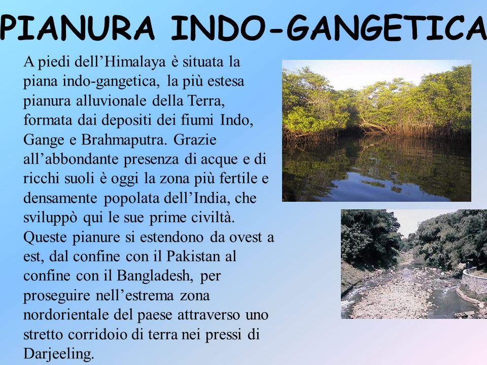 PIANURA INDO-GANGETICA