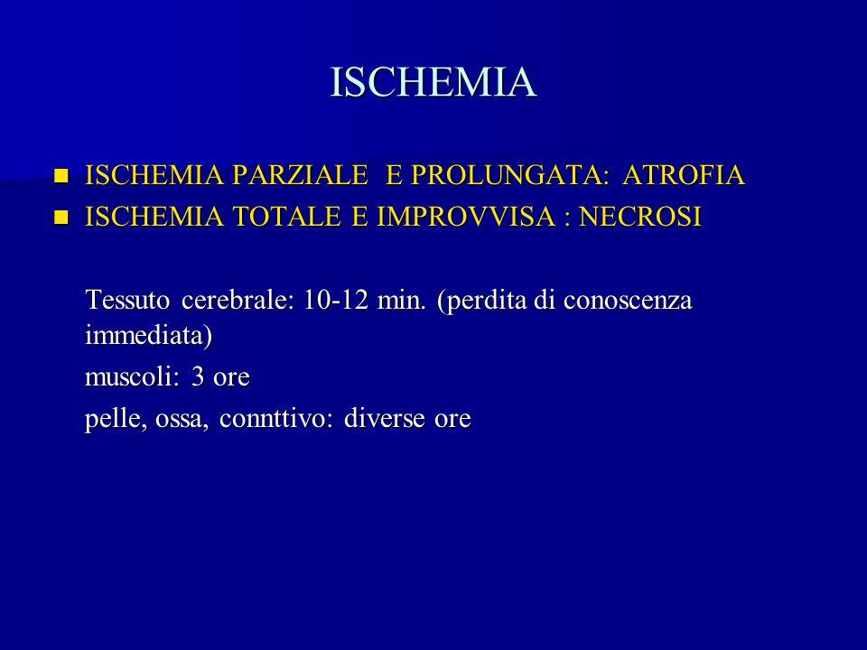 ISCHEMIA ISCHEMIA PARZIALE E PROLUNGATA: ATROFIA