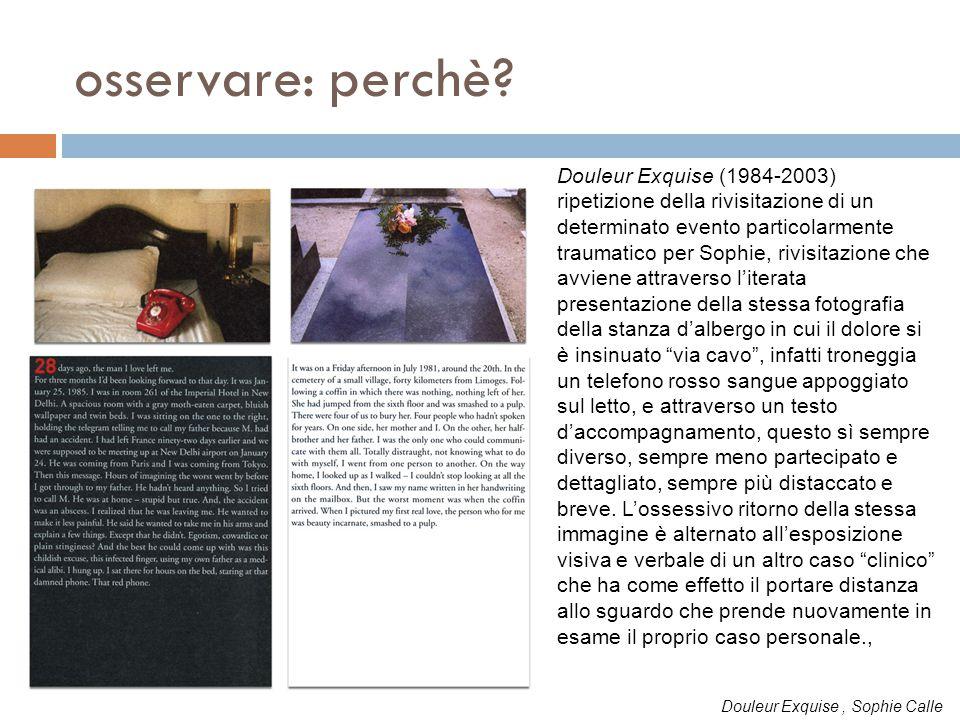 osservare: perchè Douleur Exquise (1984-2003)