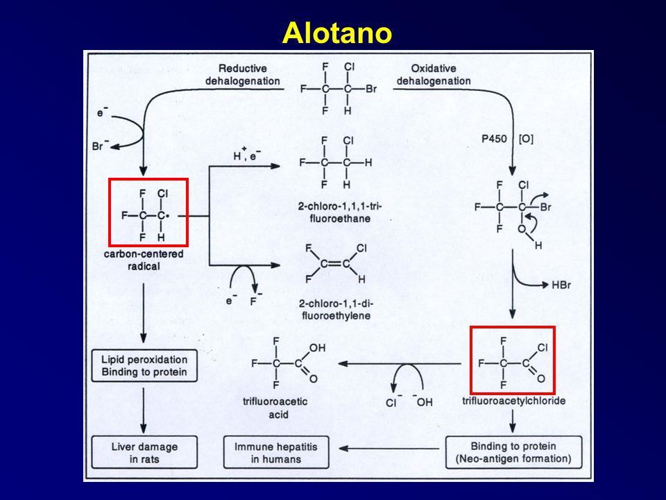 Alotano
