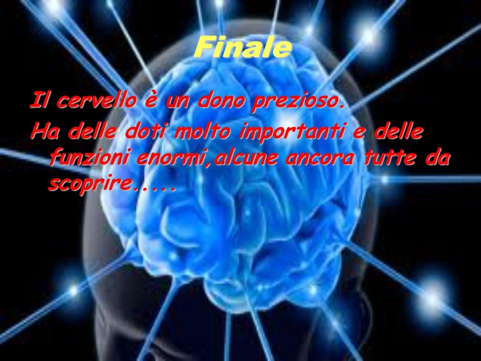 Finale Il cervello è un dono prezioso.