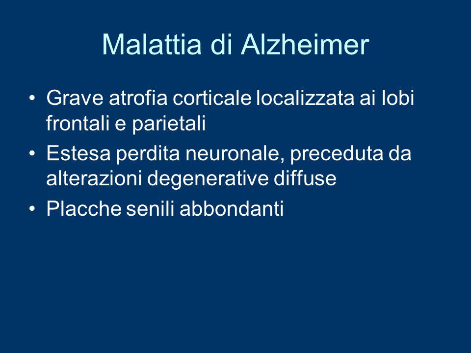 Malattia di Alzheimer Grave atrofia corticale localizzata ai lobi frontali e parietali.