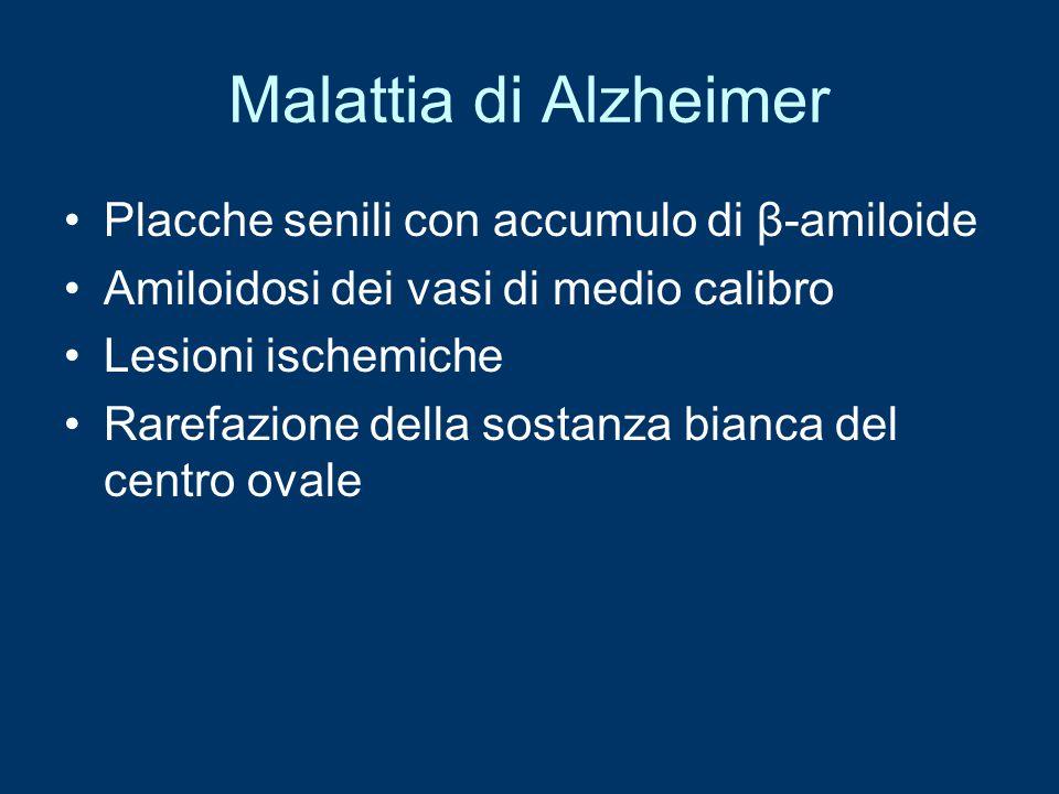 Malattia di Alzheimer Placche senili con accumulo di β-amiloide