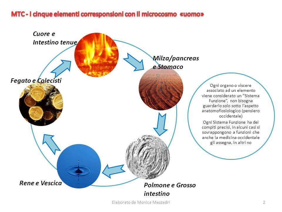 MTC - i cinque elementi corresponsioni con il microcosmo «uomo»
