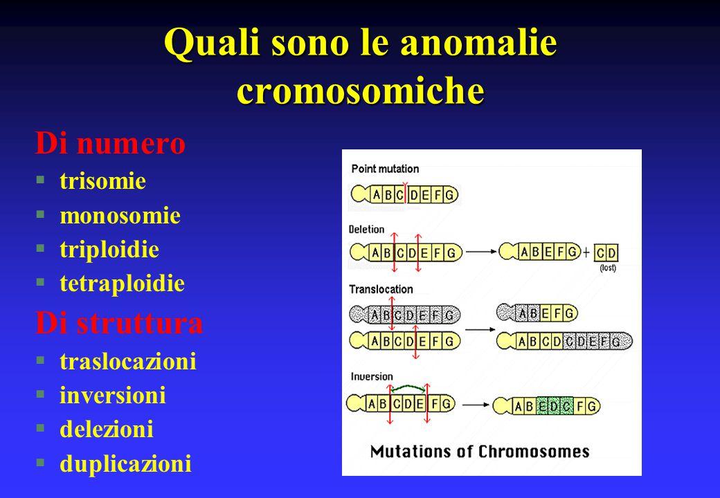 Quali sono le anomalie cromosomiche