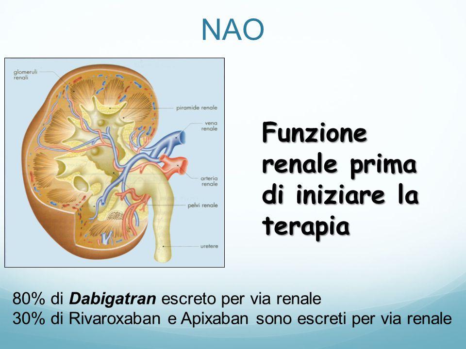 NAO Funzione renale prima di iniziare la terapia
