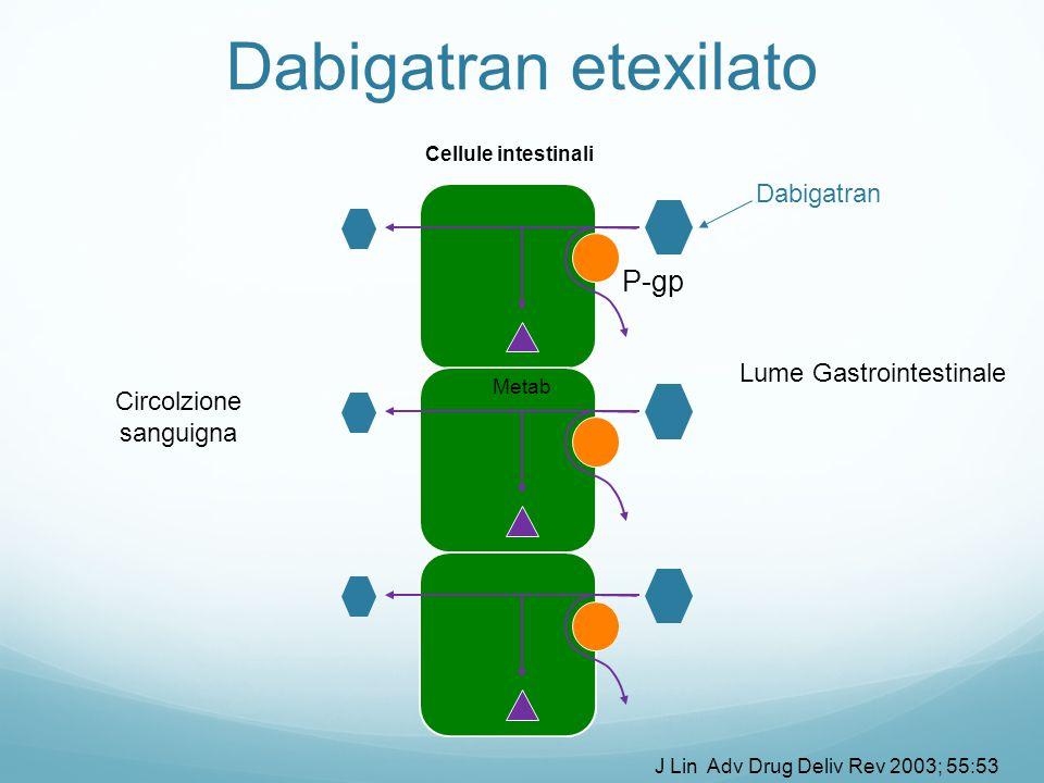 Dabigatran etexilato P-gp Dabigatran Lume Gastrointestinale