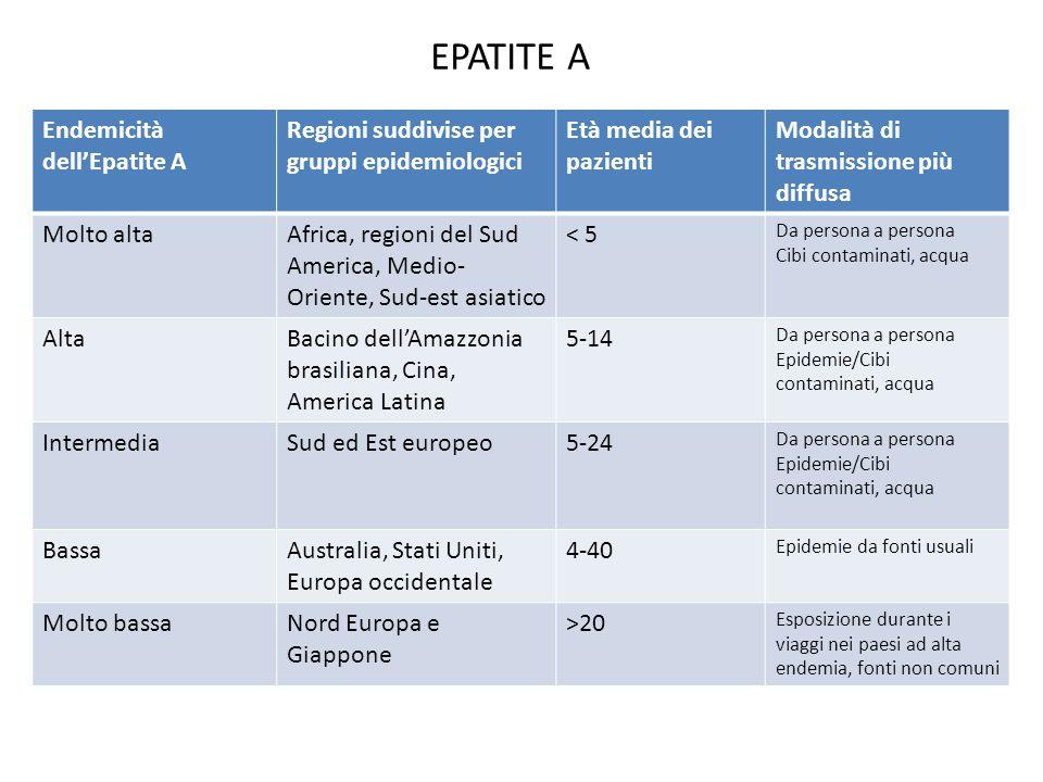EPATITE A Endemicità dell'Epatite A