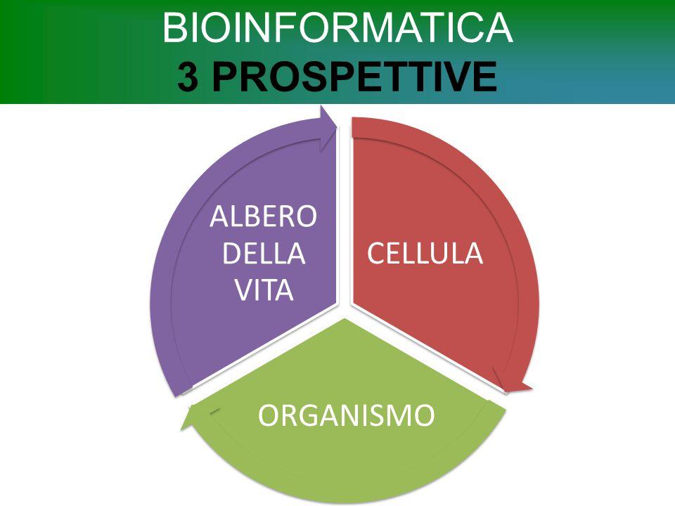 BIOINFORMATICA 3 PROSPETTIVE