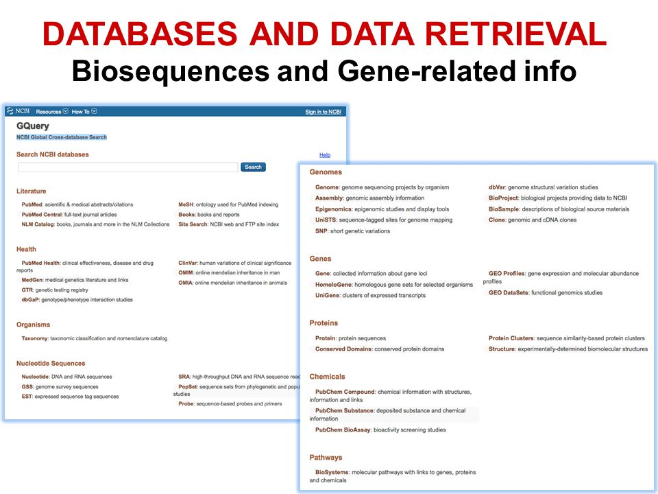 DATABASES AND DATA RETRIEVAL Biosequences and Gene-related info