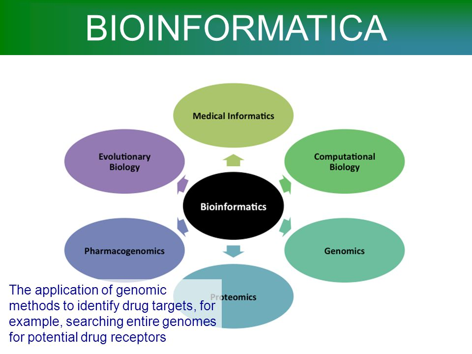 BIOINFORMATICA Pharmacogenomics is the study of how genes affect a person's response to drugs.