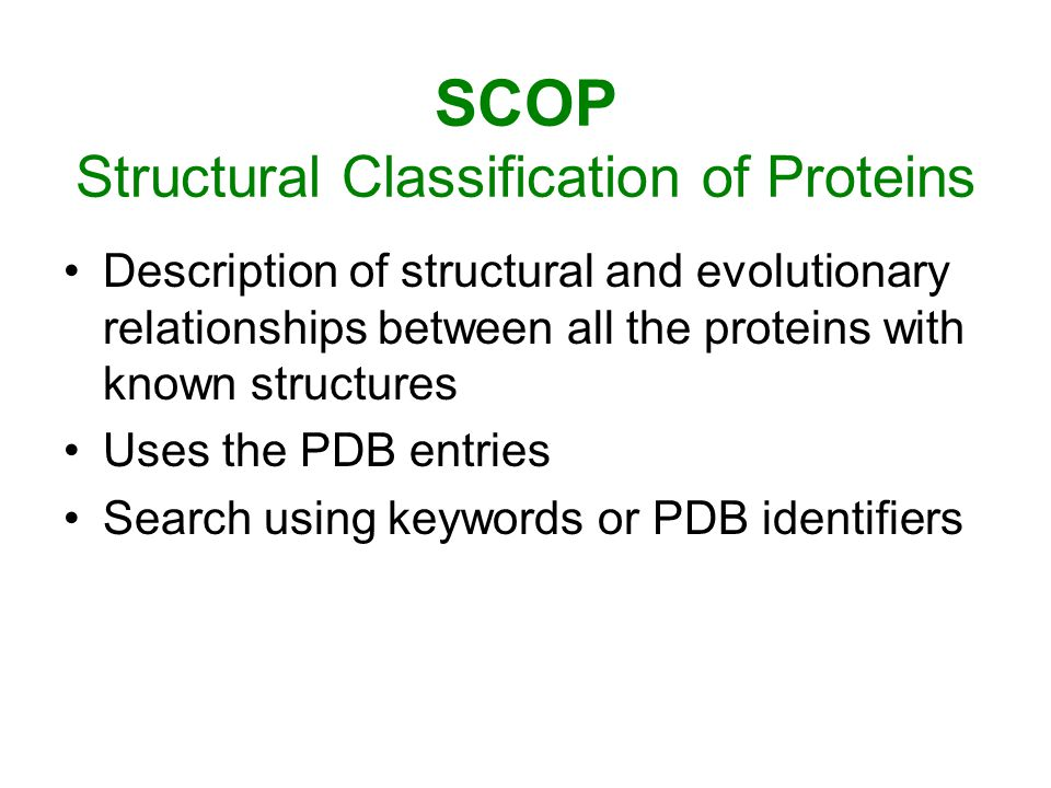 SCOP Structural Classification of Proteins