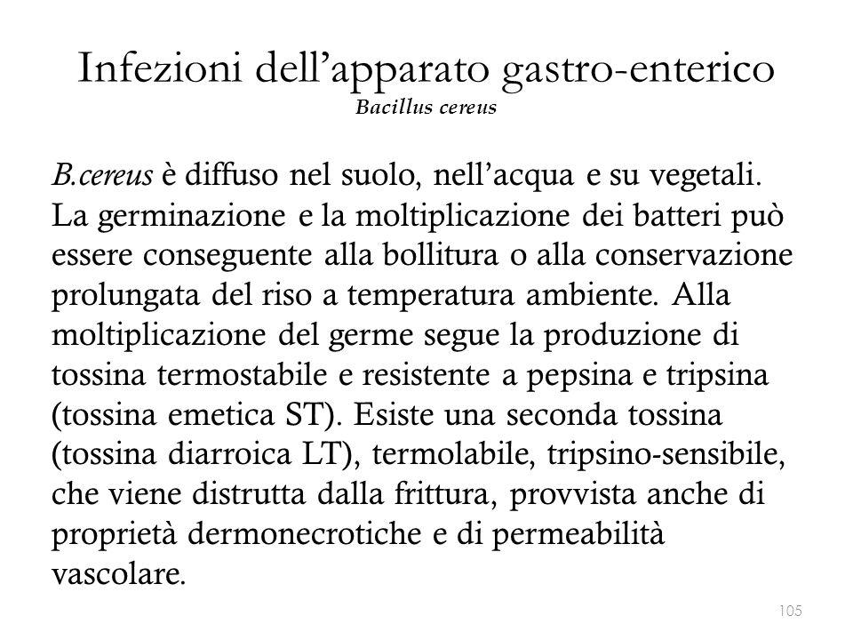 Infezioni dell'apparato gastro-enterico Bacillus cereus