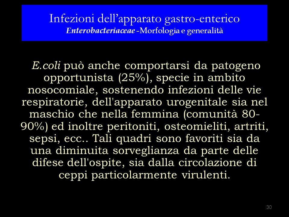Infezioni dell'apparato gastro-enterico Enterobacteriaceae -Morfologia e generalità