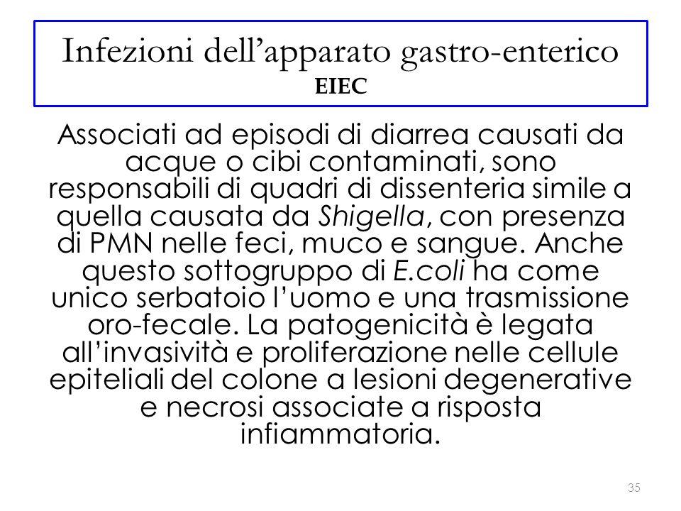 Infezioni dell'apparato gastro-enterico EIEC