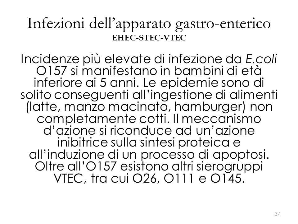 Infezioni dell'apparato gastro-enterico EHEC-STEC-VTEC