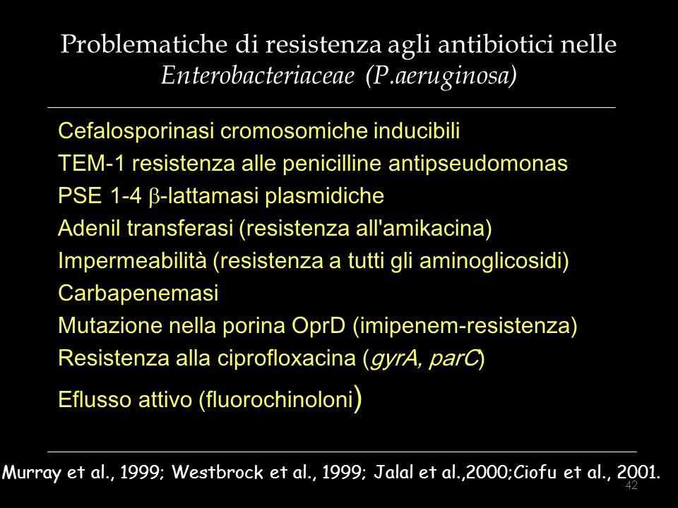 Problematiche di resistenza agli antibiotici nelle Enterobacteriaceae (P.aeruginosa)