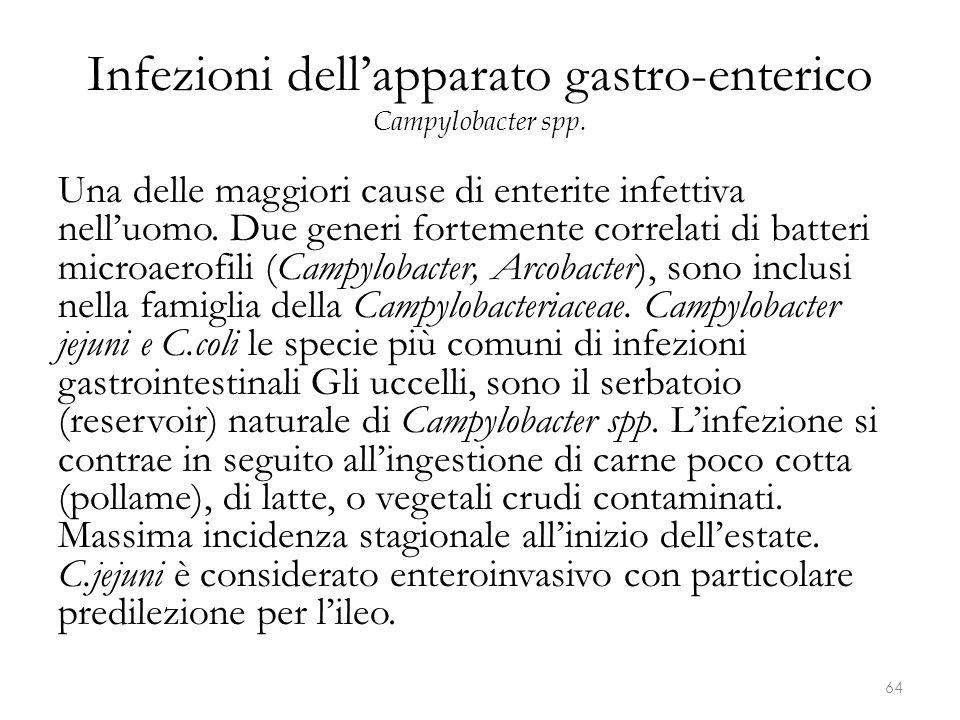Infezioni dell'apparato gastro-enterico Campylobacter spp.
