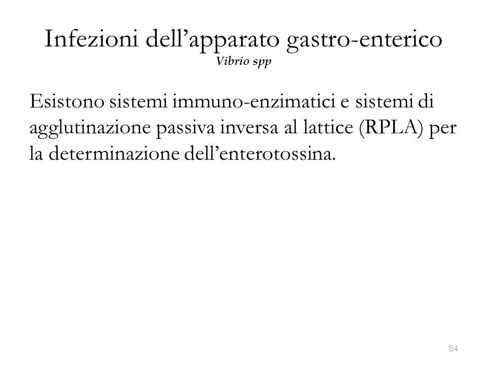 Infezioni dell'apparato gastro-enterico Vibrio spp