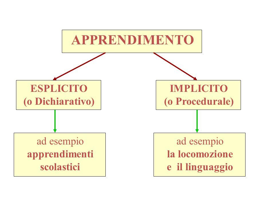 APPRENDIMENTO ESPLICITO (o Dichiarativo) IMPLICITO (o Procedurale)