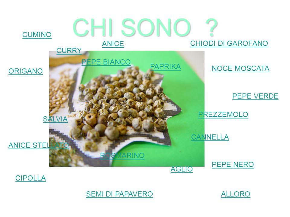 CHI SONO CUMINO ANICE CHIODI DI GAROFANO CURRY PEPE BIANCO PAPRIKA