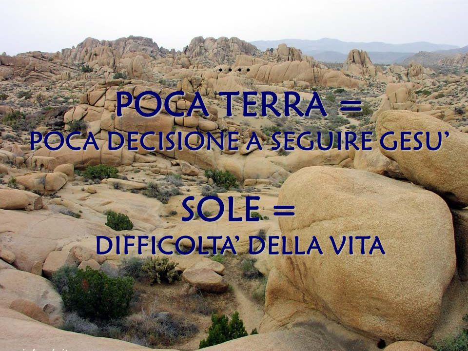POCA DECISIONE A SEGUIRE GESU' DIFFICOLTA' DELLA VITA