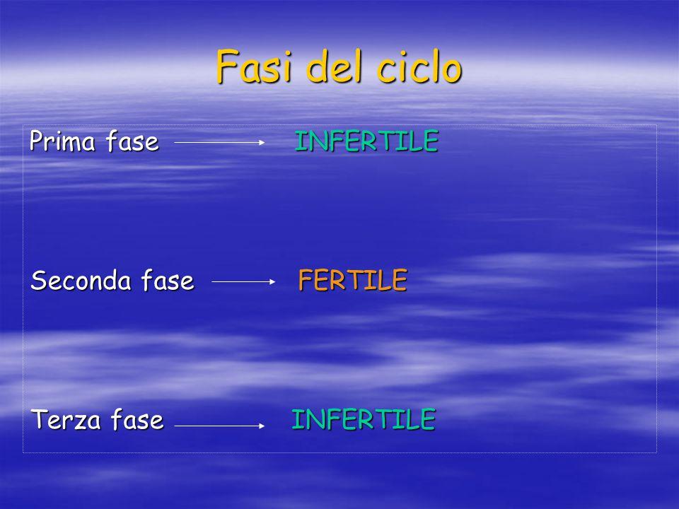Fasi del ciclo Prima fase INFERTILE Seconda fase FERTILE