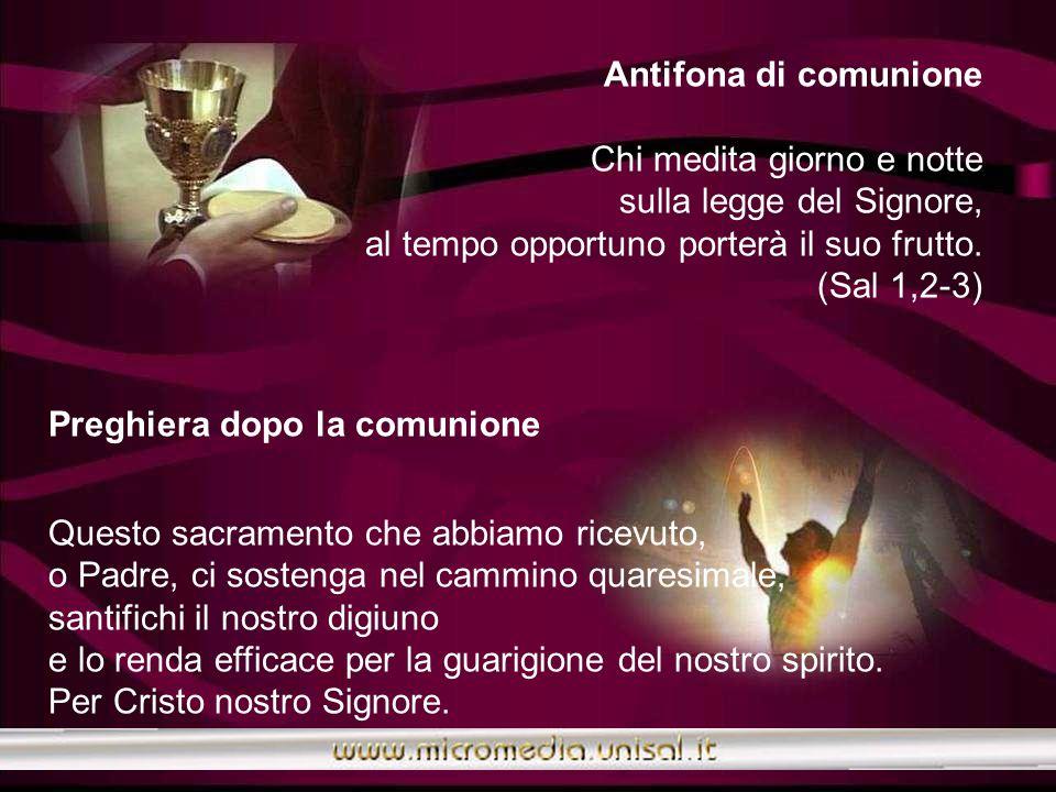 Antifona di comunione Chi medita giorno e notte sulla legge del Signore, al tempo opportuno porterà il suo frutto. (Sal 1,2-3)