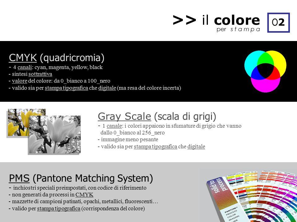 >> il colore O2 CMYK (quadricromia) Gray Scale (scala di grigi)