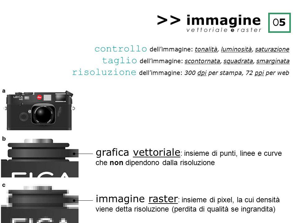 >> immagine O5. v e t t o r i a l e e r a s t e r. controllo dell'immagine: tonalità, luminosità, saturazione.