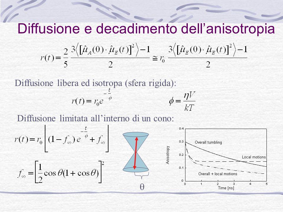 Diffusione e decadimento dell'anisotropia