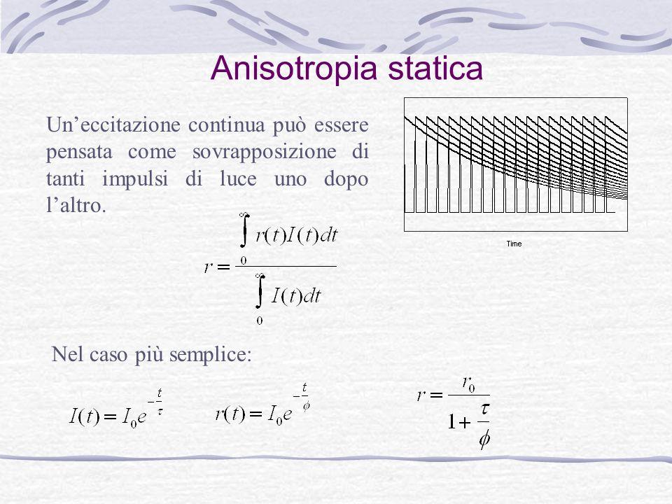 Anisotropia statica Un'eccitazione continua può essere pensata come sovrapposizione di tanti impulsi di luce uno dopo l'altro.