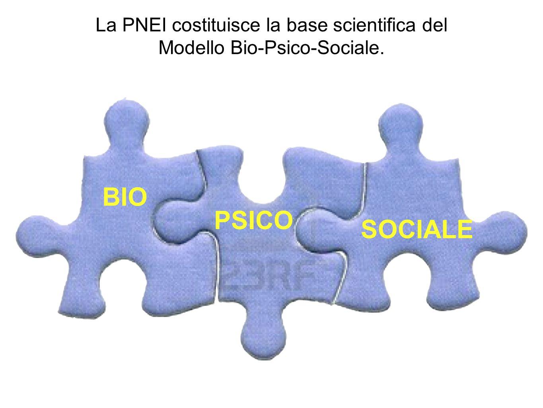 La PNEI costituisce la base scientifica del Modello Bio-Psico-Sociale.
