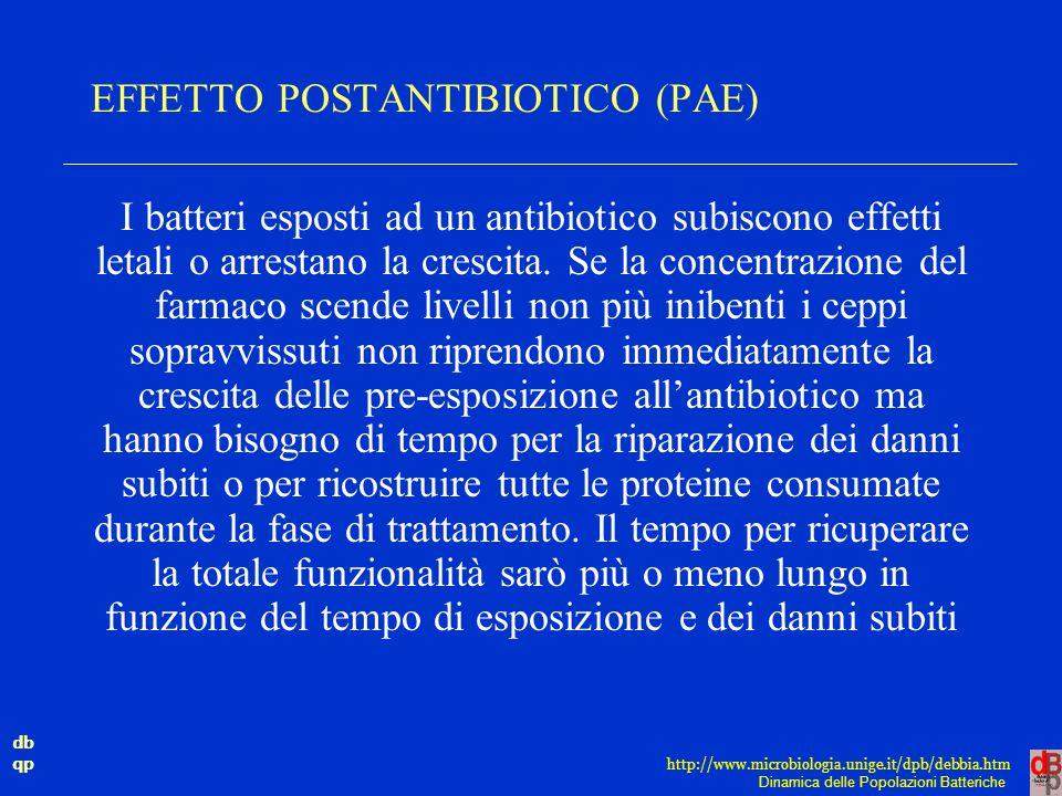 EFFETTO POSTANTIBIOTICO (PAE)