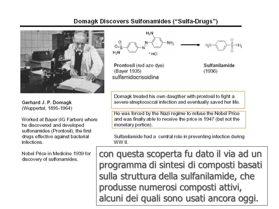 sulfamidocrisoidina