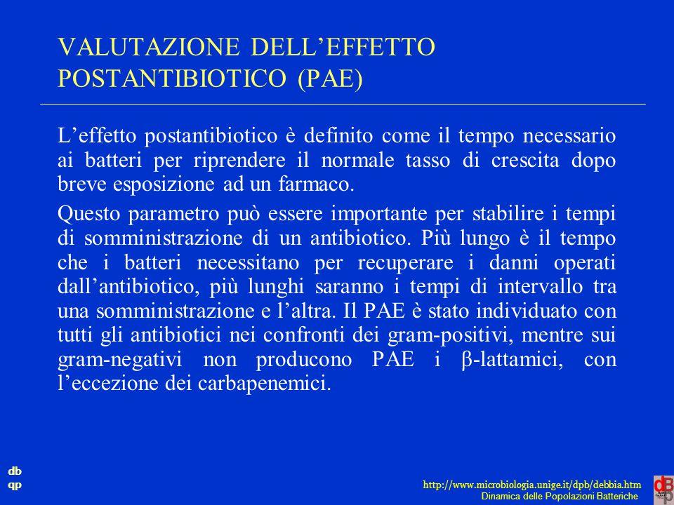 VALUTAZIONE DELL'EFFETTO POSTANTIBIOTICO (PAE)